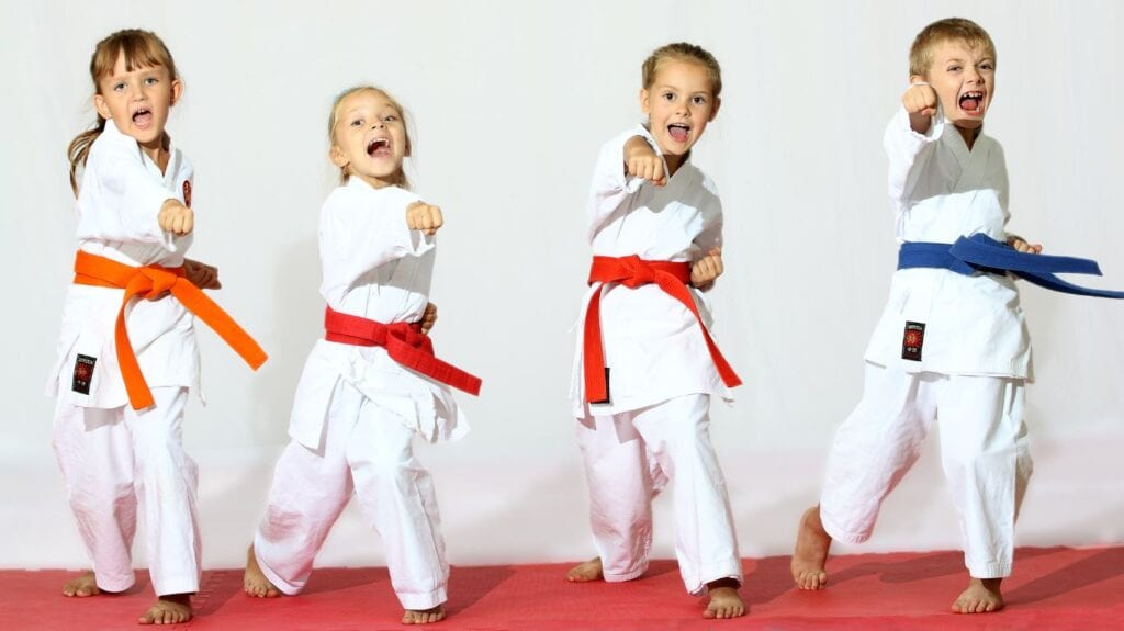 Which Martial Art should you choose?
